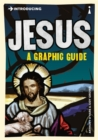 Image for Introducing Jesus  : a graphic guide