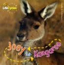 Image for Joey to kangaroo