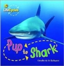Image for Pup to shark