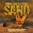 Image for Hidden in the sand