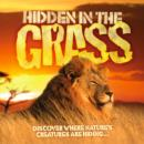 Image for Hidden in the grass