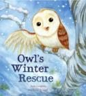 Image for Owl's winter rescue
