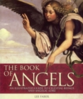 Image for The book of angels  : an illustrated guide to celestial beings and angelic lore