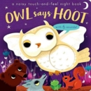 Image for Owl says hoot  : a noisy touch-and-feel night book