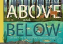 Image for Above and below