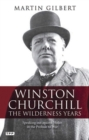 Image for Winston Churchill  : the wilderness years