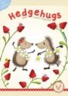 Image for Hedgehugs A3 Organiser 2021