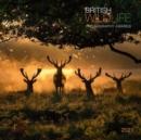 Image for British Wildlife 2021 Calendar : British Wildlife Photography Awards 2021 Calendar