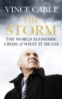 Image for The storm  : the world economic crisis and what it means