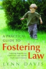 Image for A practical guide to fostering law  : fostering regulations, child care law and the youth justice system