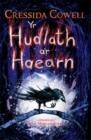 Image for Yr hudlath a'r haearn