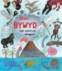 Image for Stori bywyd