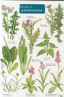 Image for Guide to Grassland Plants 1