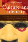 Image for Culture and Identity : The History, Theory and Practice of Psychological Anthropology