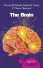 Image for The brain  : a beginner's guide