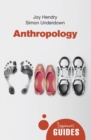 Image for Anthropology  : a beginner's guide