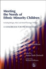 Image for Meeting the needs of ethnic minority children  : including refugee, black and mixed parentage children