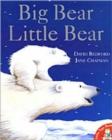 Image for Big Bear, Little Bear