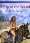 Image for Welsh History Stories: Trip to the Seaside, A (Big Book)