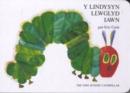 Image for Y lindysyn llwglyd iawn