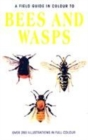 Image for Bees and wasps