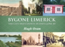 Image for Bygone Limerick  : the city and county in days gone by