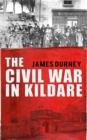 Image for The Civil War in Kildare