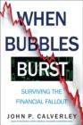 Image for When bubbles burst  : surviving the financial fallout