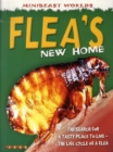 Image for Flea's new home
