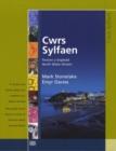 Image for Cwrs Sylfaen: Llyfr Cwrs (Gogledd / North)