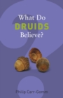 Image for What do Druids believe?