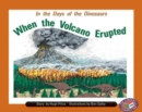 Image for When the Volcano Erupted