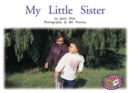 Image for My Little Sister