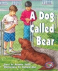 Image for A Dog Called Bear
