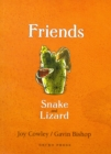 Image for Friends  : Snake and Lizard