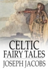 Image for Celtic Fairy Tales