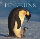 Image for Penguins