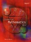 Image for Essential Mathematics : Book 9