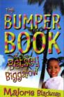 Image for The bumper book of Betsey Biggalow