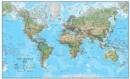 Image for World environmental laminated