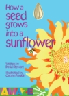 Image for How a seed grows into a sunflower
