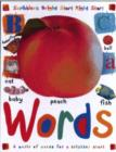 Image for Words  : a world of words for a brighter start