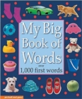 Image for My big book of words  : over 1,000 first words