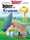 Image for Asterix a'r cryman aur