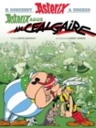 Image for Asterix agus an cealgaire