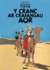 Image for Y cranc a'r crafangau aur