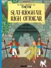 Image for Sláat-Ráioghail Righ Ottokar