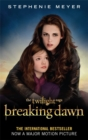 Image for Breaking dawn : Pt. 2