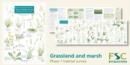 Image for Plant identification for phase 1 habitat survey  : grassland and marsh