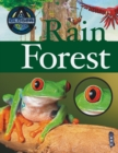 Image for A closer look at rain forest